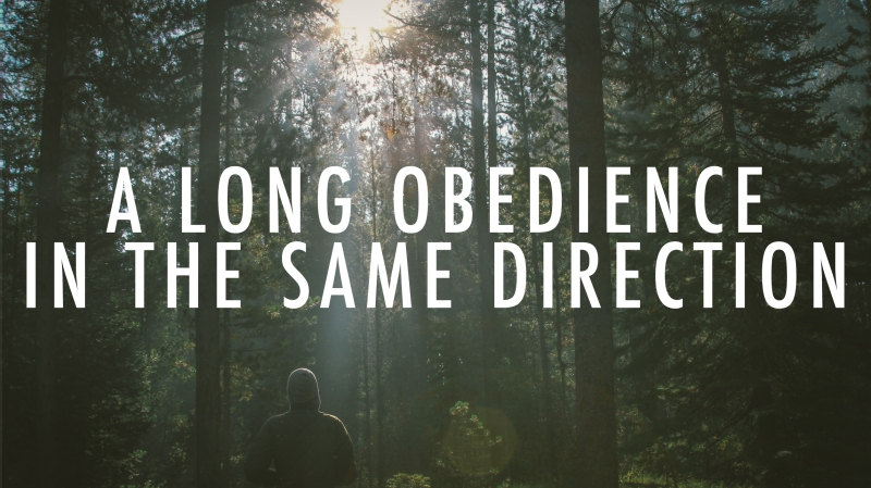 A Long Obedience